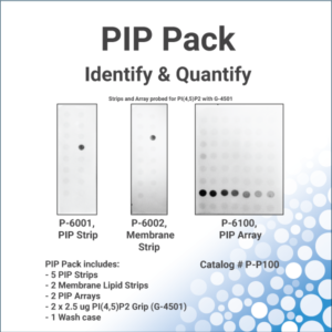 PIP Pack - bundle of PIP Strips and Membrane Strips from Echelon Biosciences
