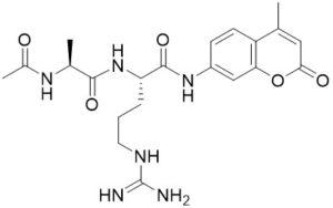 Ac-Ala-Arg-AMC - Echelon Biosciences