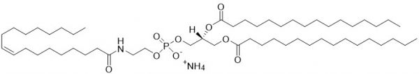 1,2-dipalmitoyl-sn-glycero-3-phosphoethanolamine-N-oleoyl (N-oleoyl-DPPE, Oleoyl-NAPE) - Echelon Biosciences